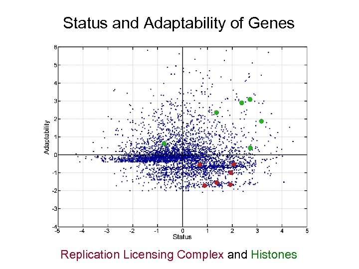 Status and Adaptability of Genes Replication Licensing Complex and Histones