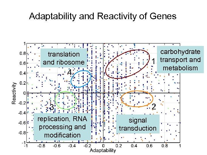 Adaptability and Reactivity of Genes carbohydrate transport and metabolism translation and ribosome replication, RNA