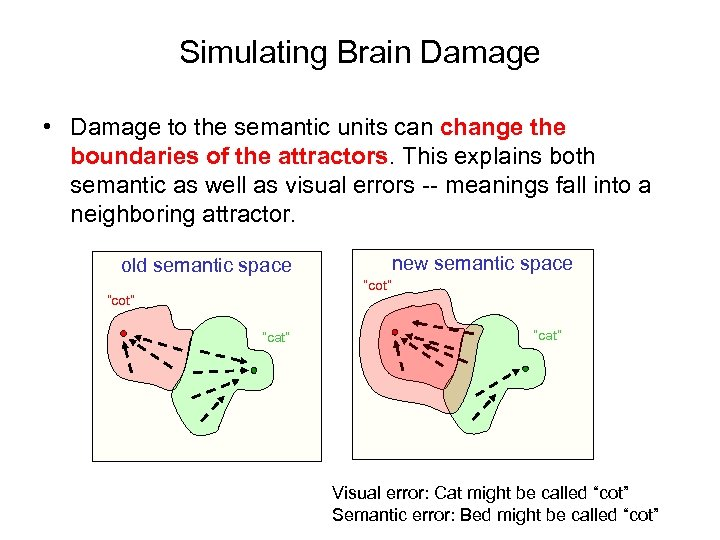 Simulating Brain Damage • Damage to the semantic units can change the boundaries of