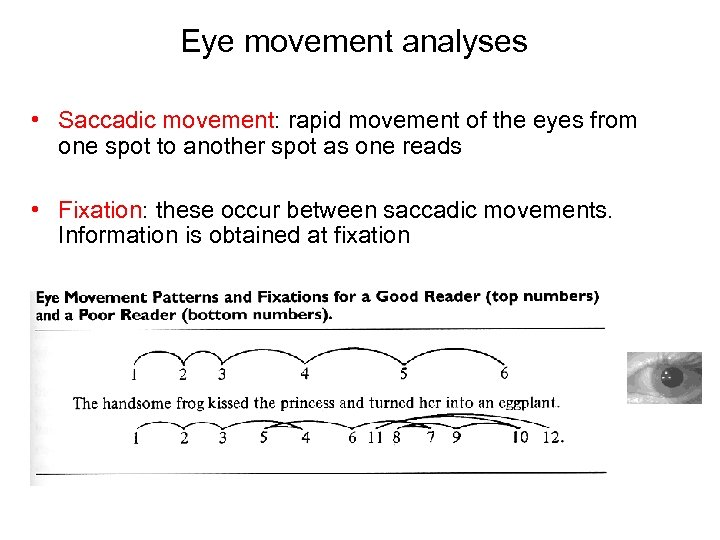 Eye movement analyses • Saccadic movement: rapid movement of the eyes from one spot
