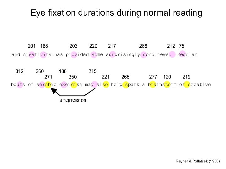 Eye fixation durations during normal reading Rayner & Pollatsek (1988)