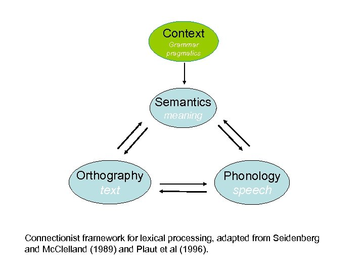 Context Grammar pragmatics Semantics meaning Orthography text Phonology speech Connectionist framework for lexical processing,