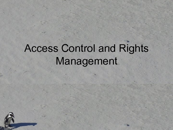 Access Control and Rights Management