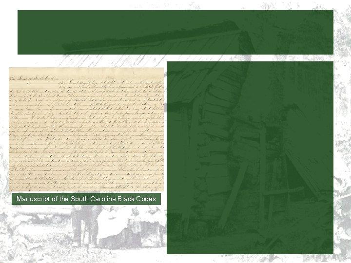 Manuscript of the South Carolina Black Codes