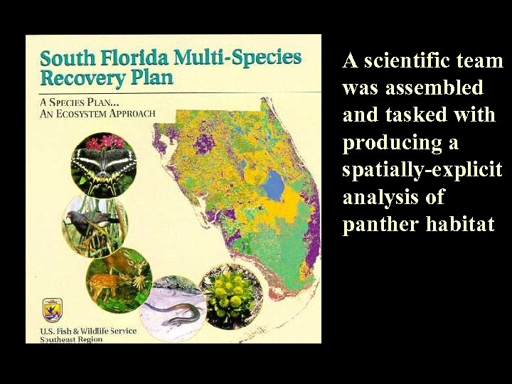 A scientific team was assembled and tasked with producing a spatially-explicit analysis of panther