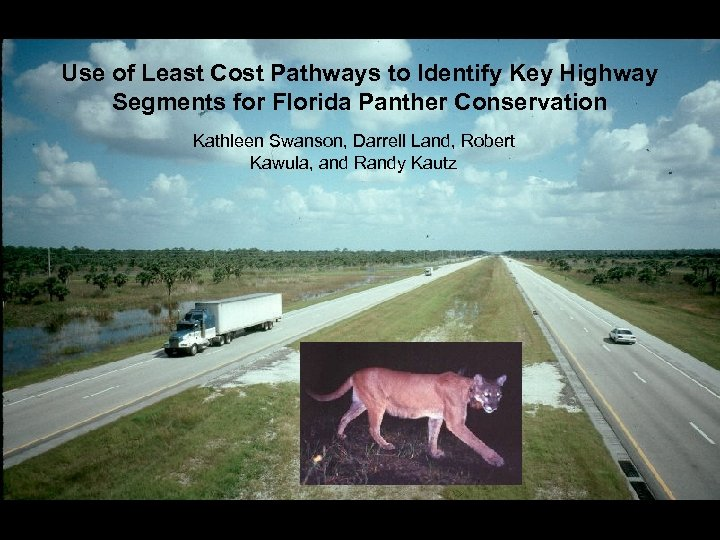 Use of Least Cost Pathways to Identify Key Highway Segments for Florida Panther Conservation
