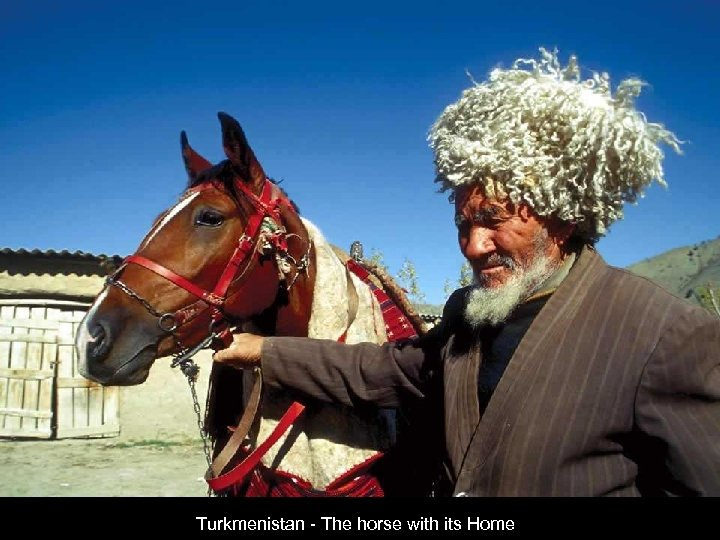Turkmenistan - The horse with its Home