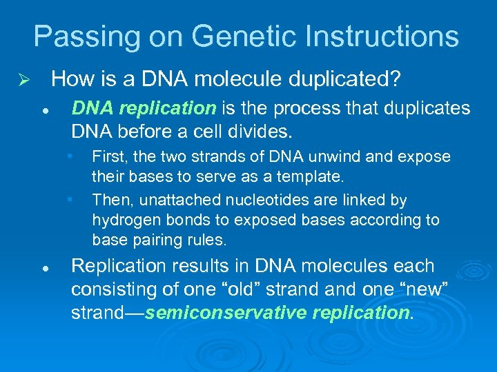 Passing on Genetic Instructions How is a DNA molecule duplicated? Ø l DNA replication