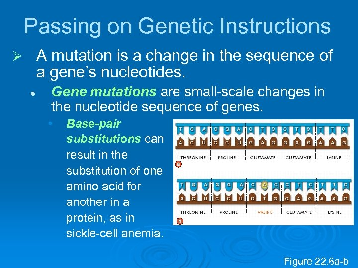 Passing on Genetic Instructions A mutation is a change in the sequence of a