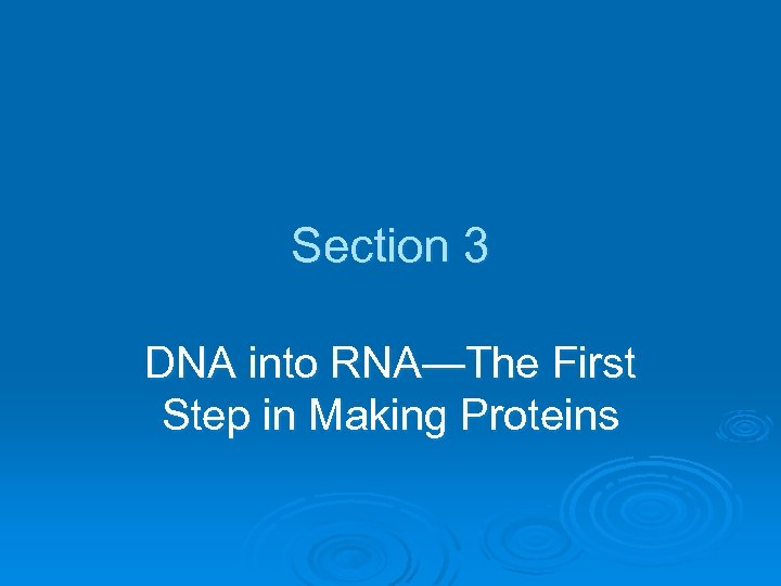 Section 3 DNA into RNA—The First Step in Making Proteins