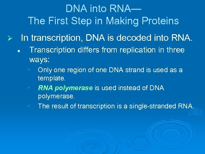 DNA into RNA— The First Step in Making Proteins In transcription, DNA is decoded