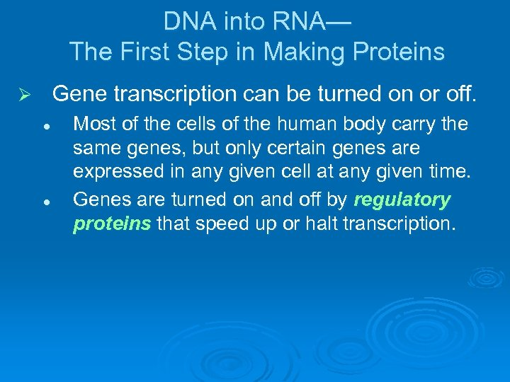 DNA into RNA— The First Step in Making Proteins Gene transcription can be turned