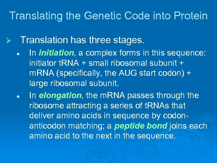 Translating the Genetic Code into Protein Translation has three stages. Ø l l In