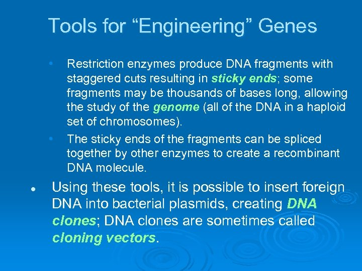 "Tools for ""Engineering"" Genes • • l Restriction enzymes produce DNA fragments with staggered"