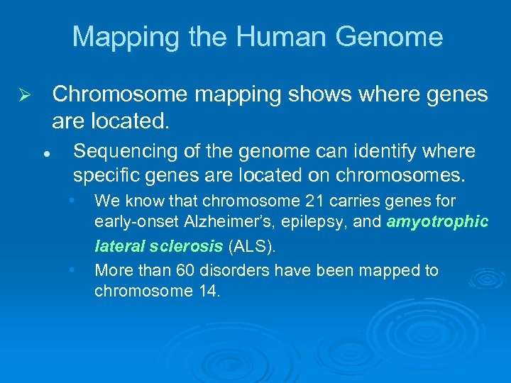 Mapping the Human Genome Chromosome mapping shows where genes are located. Ø l Sequencing