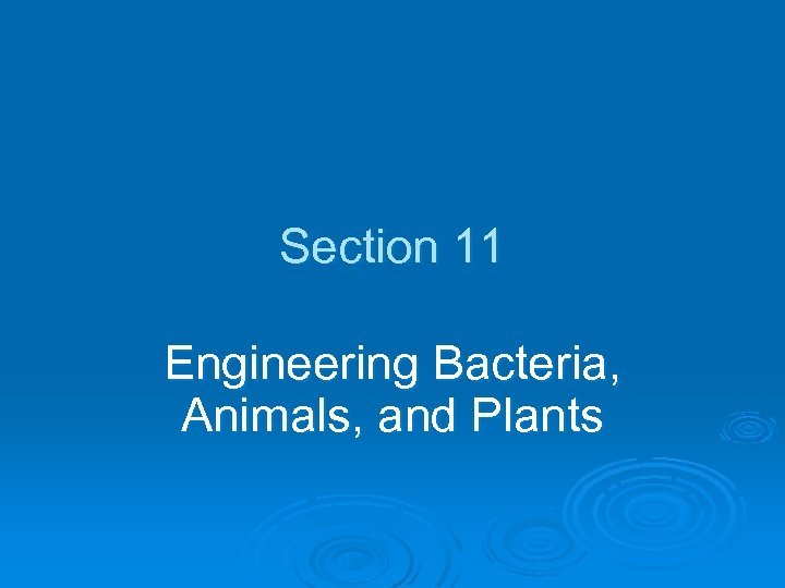Section 11 Engineering Bacteria, Animals, and Plants