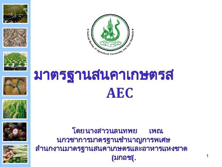 มาตรฐานสนคาเกษตรส AEC โดย นางสาวนลนทพย เพณ นกวชาการมาตรฐานชำนาญการพเศษ สำนกงานมาตรฐานสนคาเกษตรและอาหารแหงชาต (มกอช(. 1