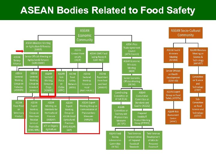 ASEAN Bodies Related to Food Safety