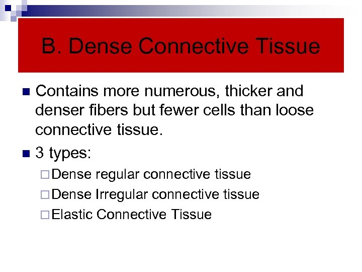 B. Dense Connective Tissue Contains more numerous, thicker and denser fibers but fewer cells