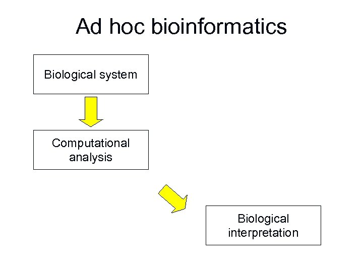 Ad hoc bioinformatics Biological system Computational analysis Biological interpretation
