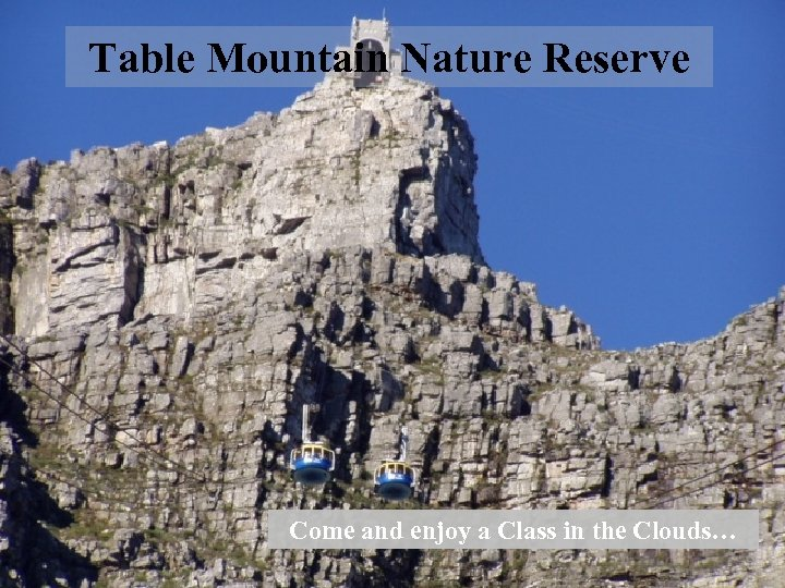 Table Mountain Nature Reserve Come and enjoy a Class in the Clouds…