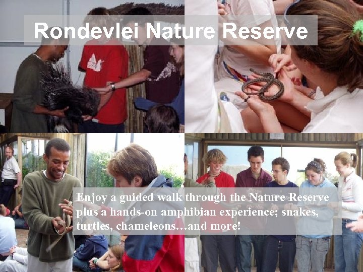 Rondevlei Nature Reserve Enjoy a guided walk through the Nature Reserve plus a hands-on