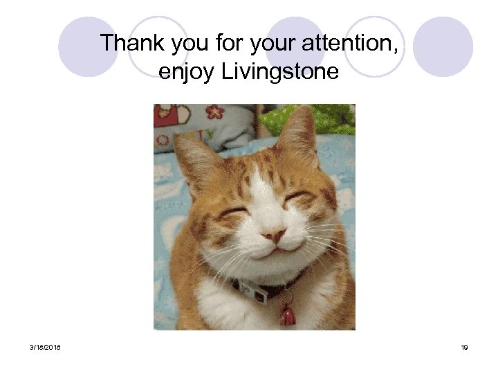 Thank you for your attention, enjoy Livingstone 3/18/2018 19