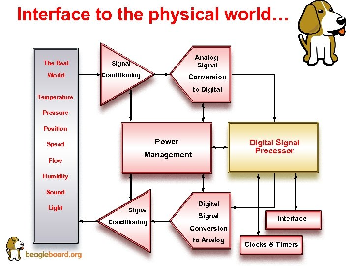 Interface to the physical world… The Real Signal Analog Signal World Conditioning Conversion to