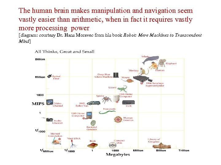 The human brain makes manipulation and navigation seem vastly easier than arithmetic, when in