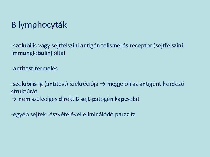 B lymphocyták -szolubilis vagy sejtfelszíni antigén felismerés receptor (sejtfelszíni immunglobulin) által -antitest termelés -szolubilis
