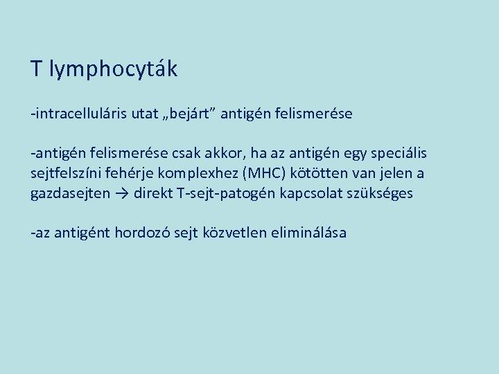 """T lymphocyták -intracelluláris utat """"bejárt"""" antigén felismerése -antigén felismerése csak akkor, ha az antigén"""