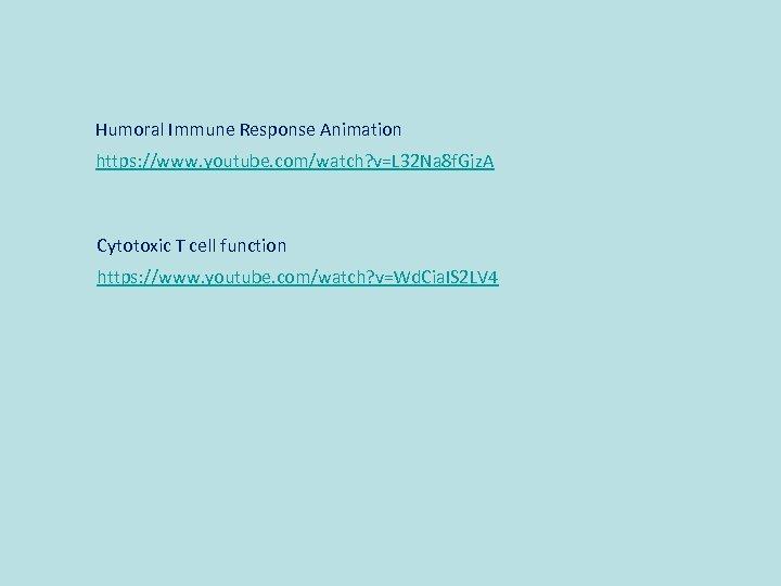 Humoral Immune Response Animation https: //www. youtube. com/watch? v=L 32 Na 8 f. Gjz.