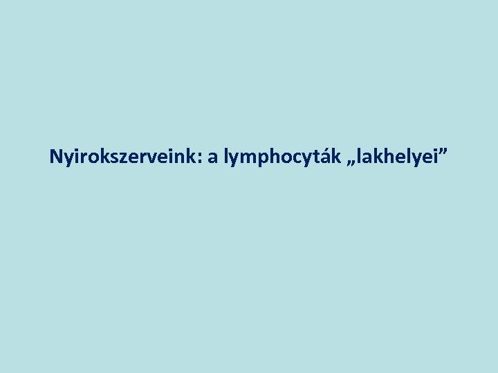 """Nyirokszerveink: a lymphocyták """"lakhelyei"""""""