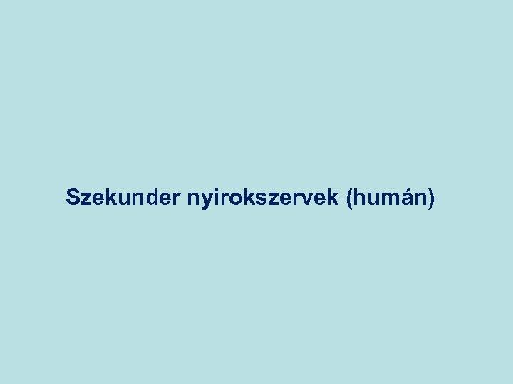 Szekunder nyirokszervek (humán)