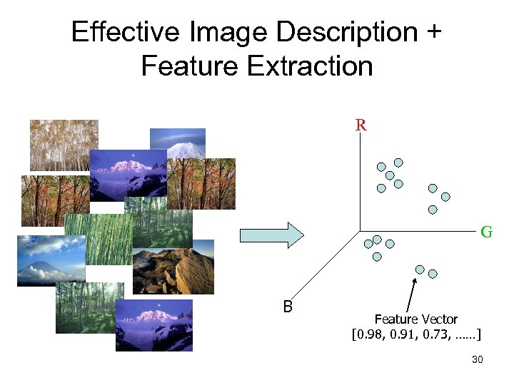 Effective Image Description + Feature Extraction R G B B Feature Vector [0. 98,