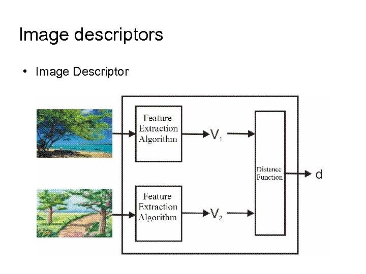 Image descriptors • Image Descriptor