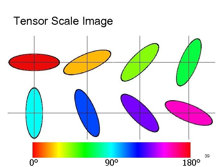 Tensor Scale Image 0° 90° 180° 39