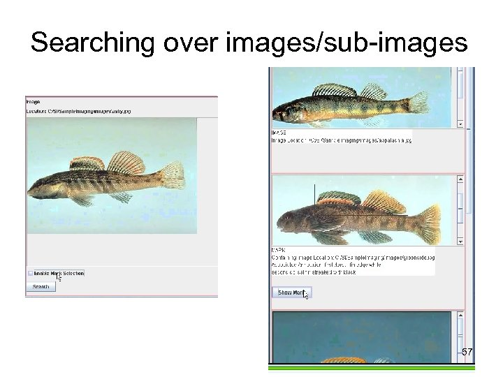 Searching over images/sub-images 57