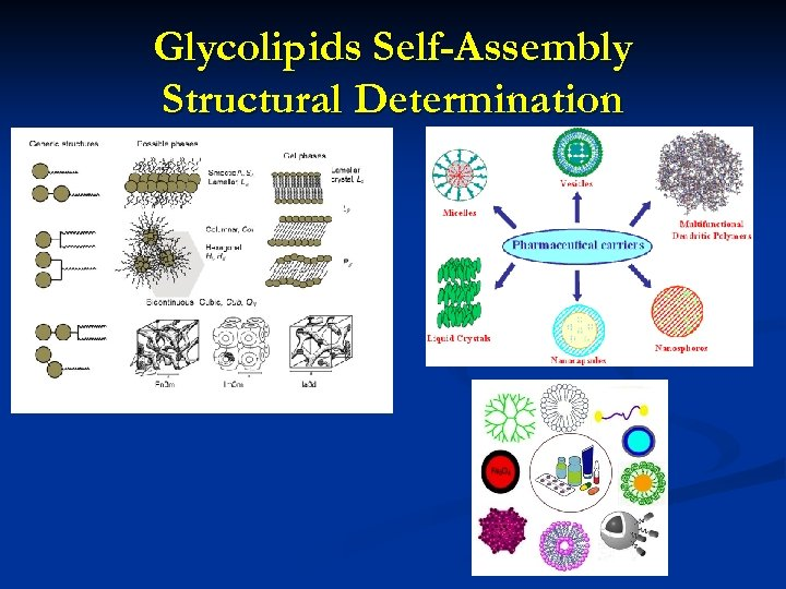 Glycolipids Self-Assembly Structural Determination
