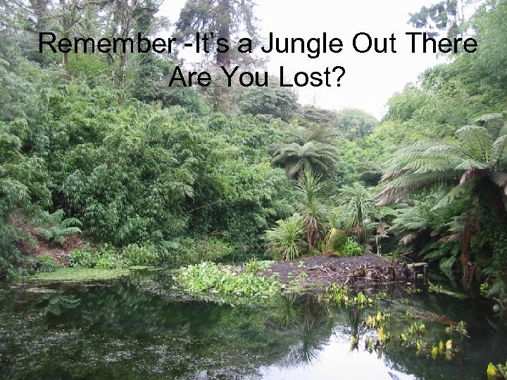 Remember -It's a Jungle Out There Are You Lost?