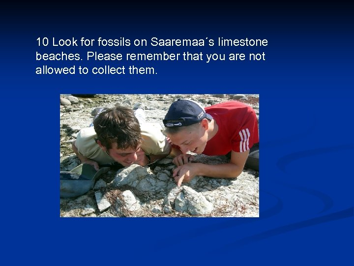 10 Look for fossils on Saaremaa´s limestone beaches. Please remember that you are not