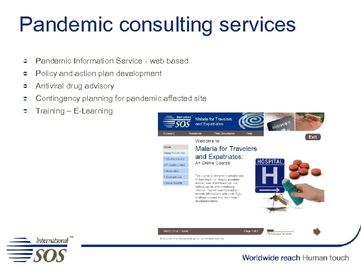 Pandemic consulting services Pandemic Information Service - web based Policy and action plan development