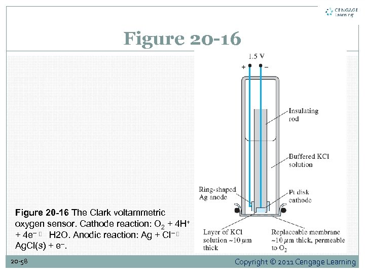 Figure 20 -16 The Clark voltammetric oxygen sensor. Cathode reaction: O 2 + 4