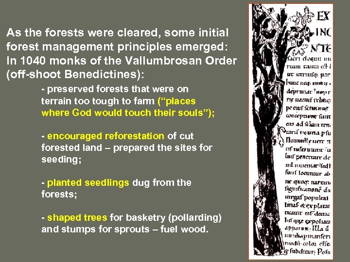 As the forests were cleared, some initial forest management principles emerged: In 1040 monks