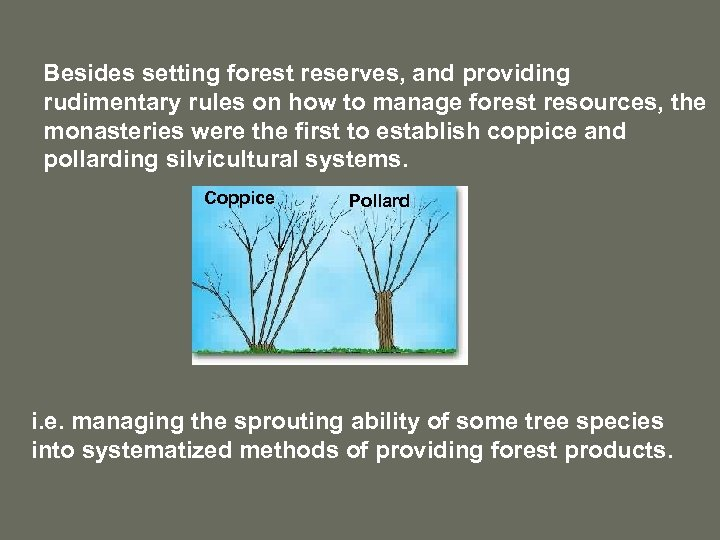 Besides setting forest reserves, and providing rudimentary rules on how to manage forest resources,