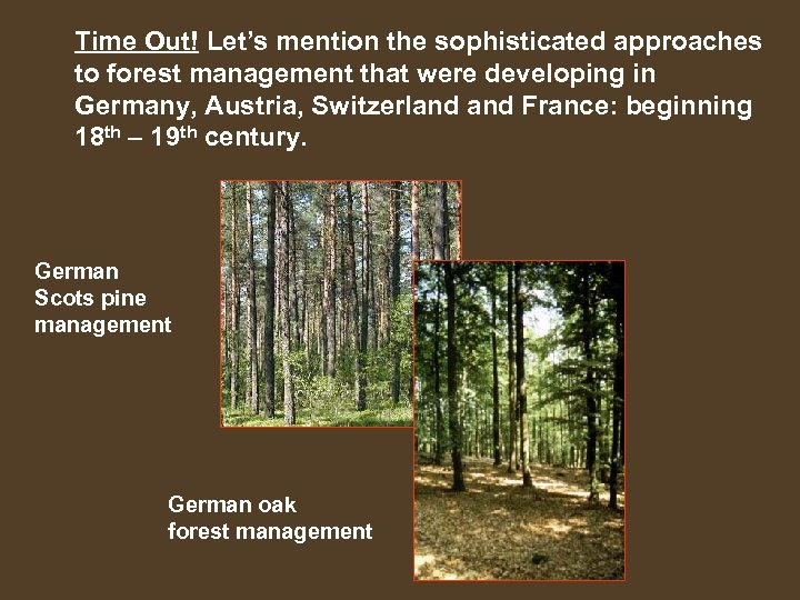 Time Out! Let's mention the sophisticated approaches to forest management that were developing in
