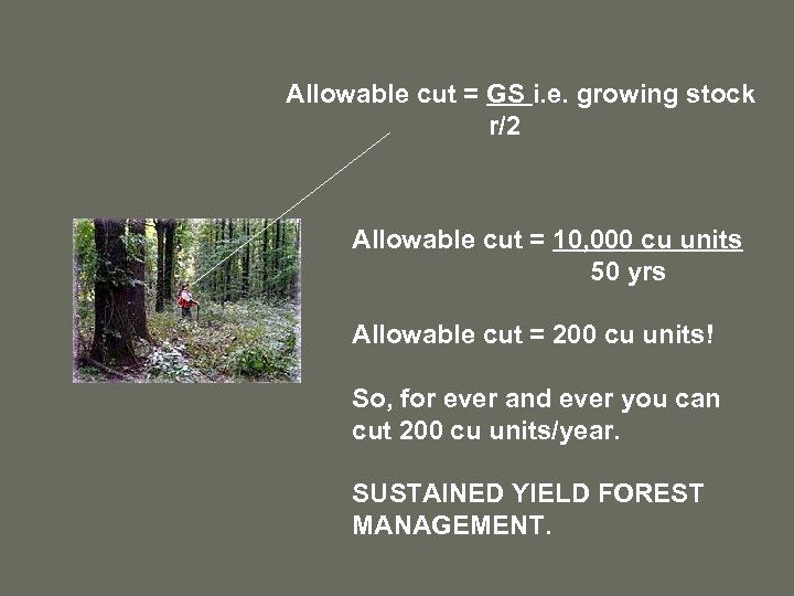 Allowable cut = GS i. e. growing stock r/2 Allowable cut = 10, 000