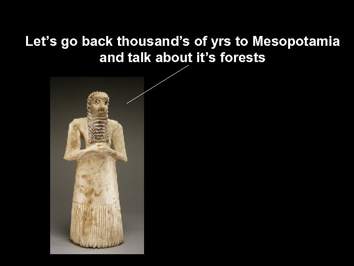 Let's go back thousand's of yrs to Mesopotamia and talk about it's forests