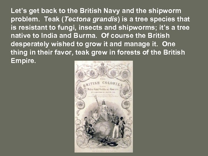 Let's get back to the British Navy and the shipworm problem. Teak (Tectona grandis)