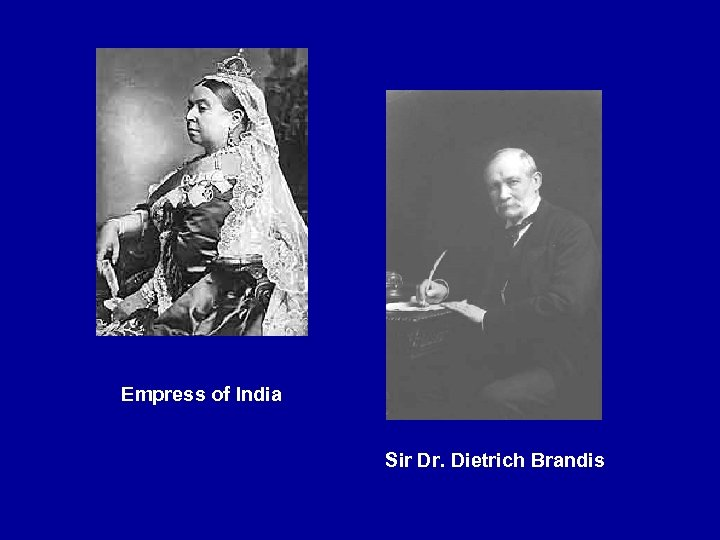 Empress of India Sir Dr. Dietrich Brandis